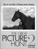 The Great Picture Hunt 2